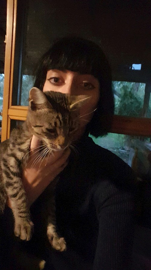 enghes pet sitter cluj napoca babysitting pets cazare plimb animale