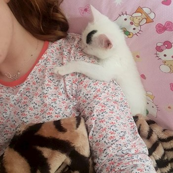 thumbnail Alina Denisa Gherman - petsitter Cluj-Napoca or nanny for dogs cats