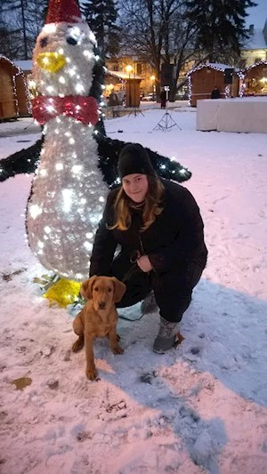 Dorothea- petsitter Cluj-Napoca or Pet Nanny for Dogs Cats